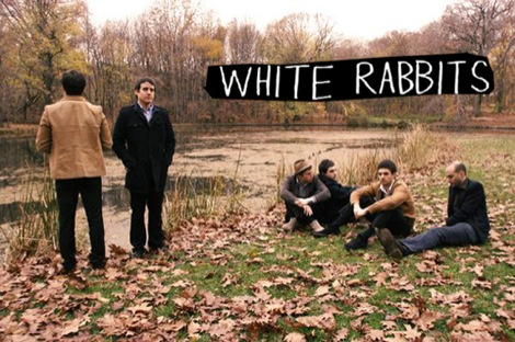 whiterabbits-top.jpg