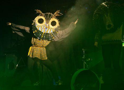 Rural Disco owl.jpg