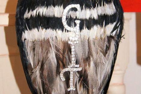 GIT-AWARD-2013-JAYNE-LAWLESS-OWL-GIT-CROP.jpg
