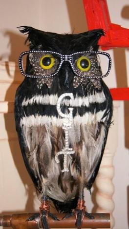 GIT-AWARD-2013-JAYNE-LAWLESS-OWL.jpg