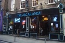 The Jacaranda