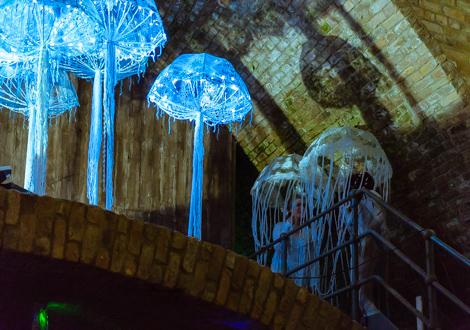 aquaria gig