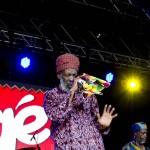 Africa Oye 2014 Michelle Roberts (28)
