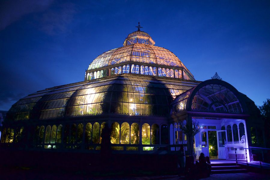 Palmhouse (photo credit: Martin Saleh)