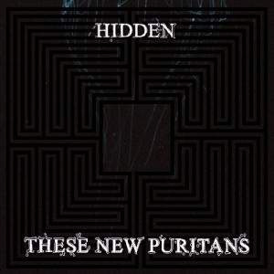 hidden_these_new_puritans
