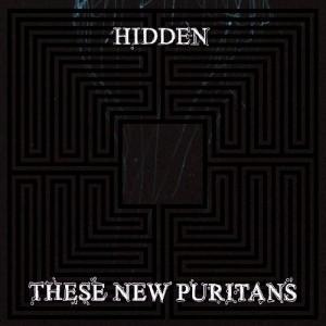 hidden_these_new_puritans