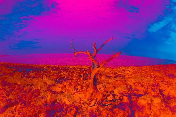 Image courtesy of isack-art.com